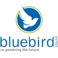 Bluebird Solar Recruitment 2021   Sales Trainee   Batch 2020-2021   3.6 LPA